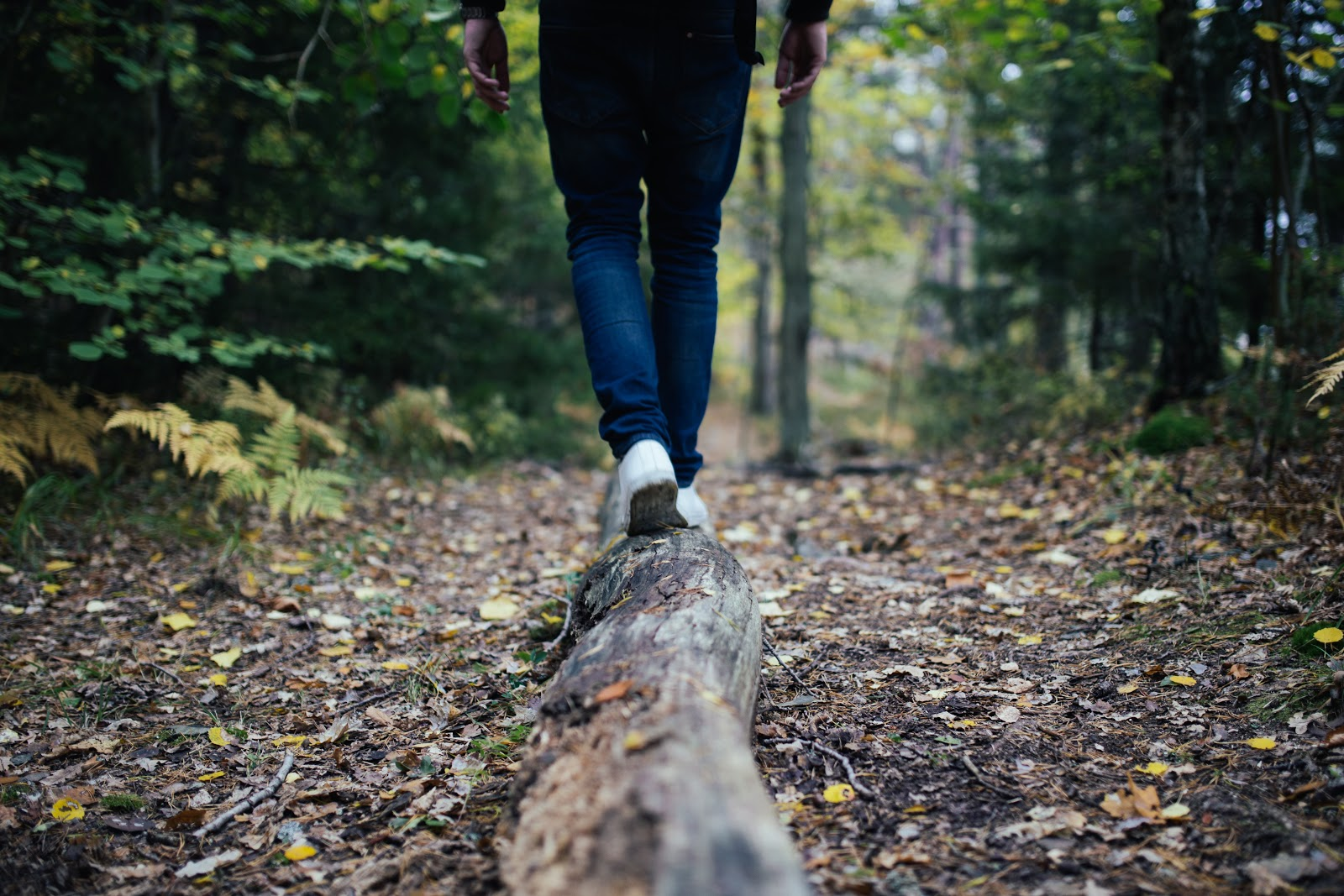 Person in jeans walking away from camera on a wooden log in the forest