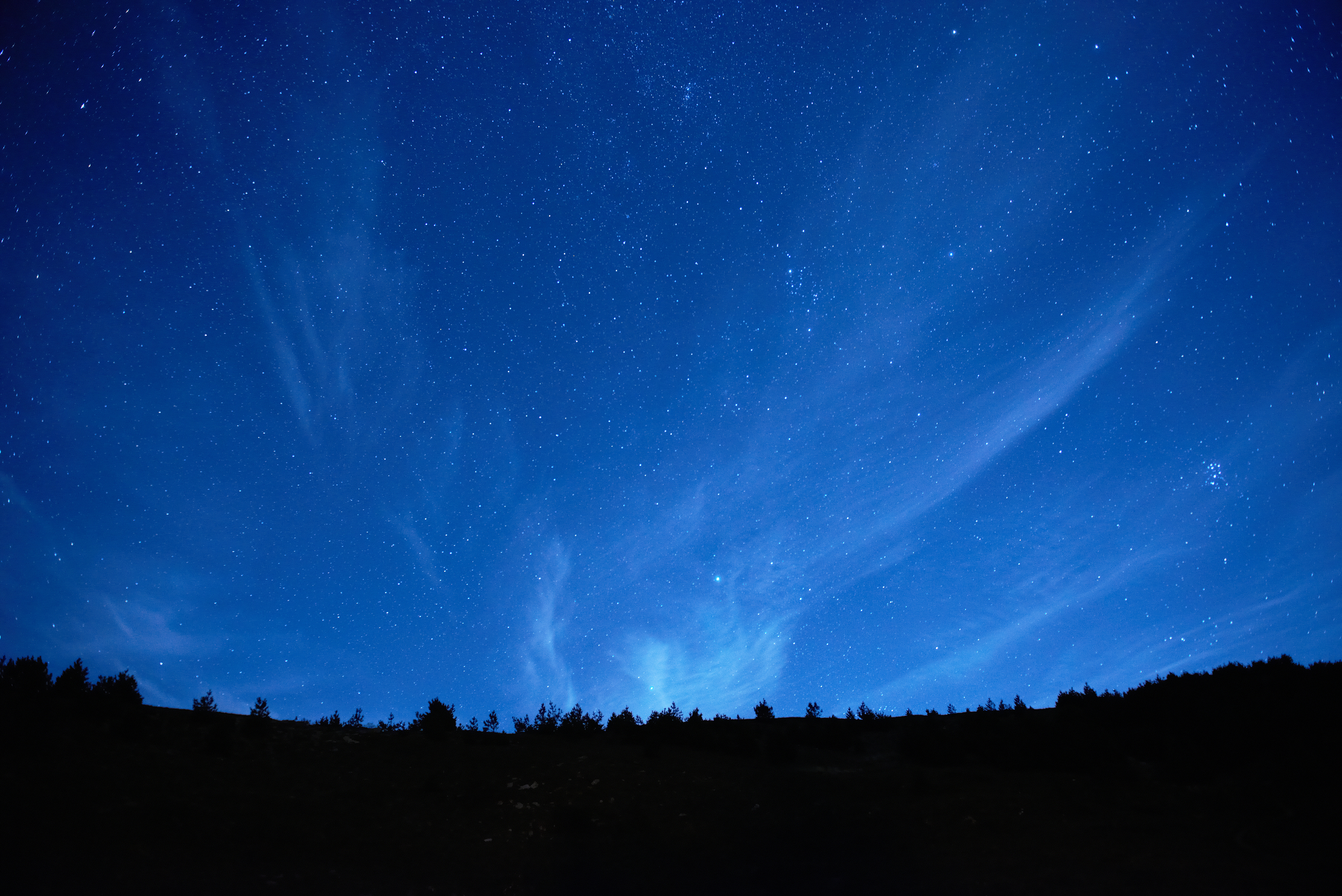 A horizon showing an electric blue night sky with stars and a line of trees seen as a black shadow in front